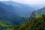 Valle del Cocora – Wanderabenteuer mit gigantischen Wachspalmen, Bergen, Nebelwald & Kolibris