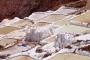 Salinen von Maras – Das weiße Gold der Inkas & Die Salzbauern Perus