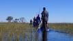 Mit dem Mokoro in das Okavango Delta – In einem Einbaum das größte, tierreichste Feuchtgebiet Afrikas hautnah erleben!