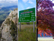 Abenteuer Great Alpine Road – Australian Alps, Bright, Mt Buffalo!