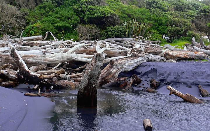 Black Beach near Mokau