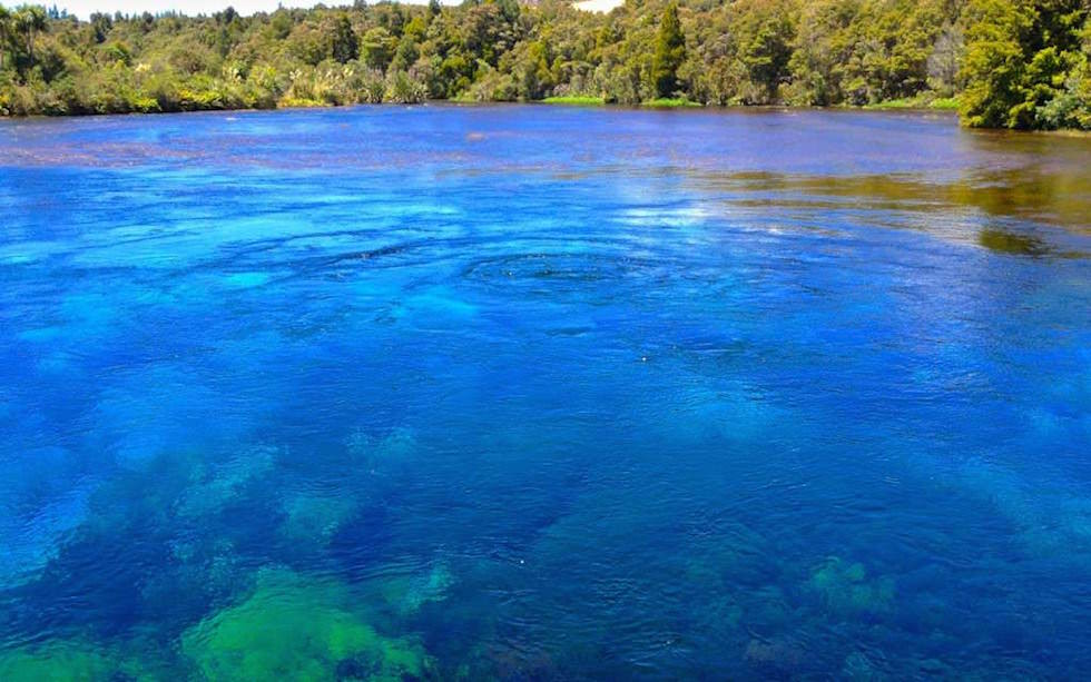 Pupu Springs oder Te Waikoropupū Springs - mächtiger Quelltopf mit dem klarsten Wasser der Welt - Golden Bay - Südinsel Neuseeland