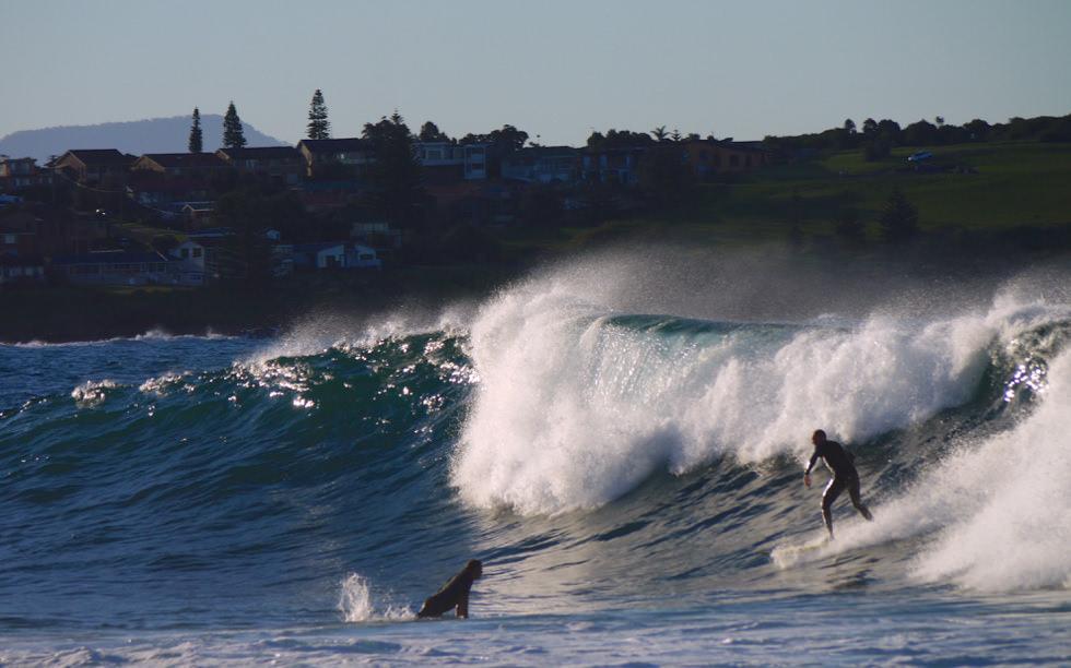 Surf and Fun Kiama