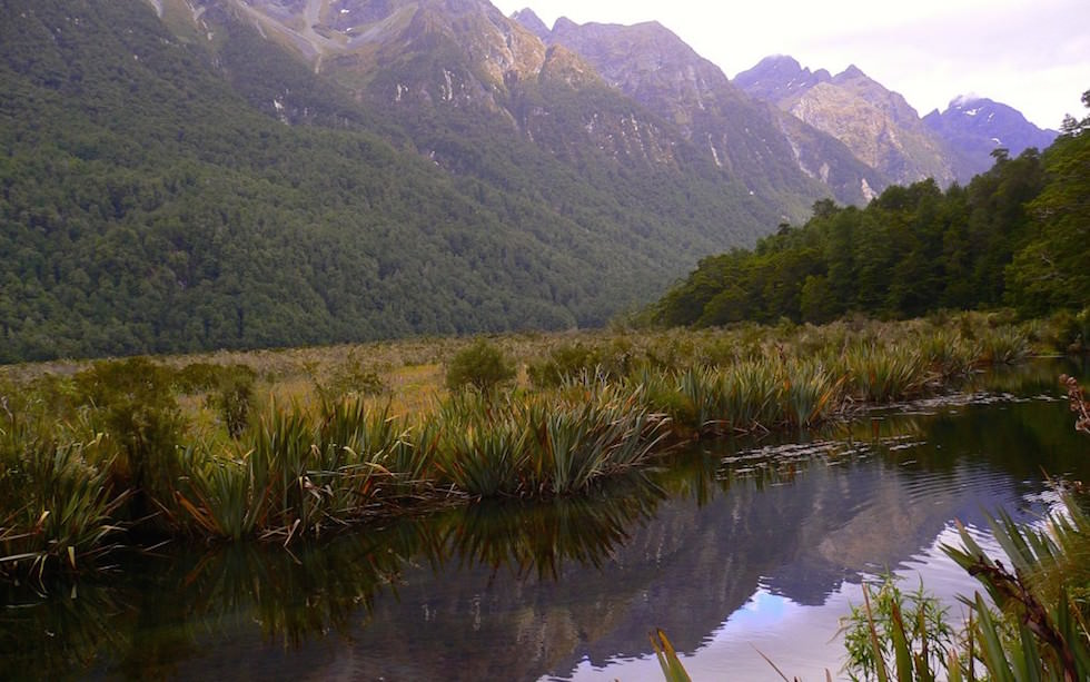 Earl Mountains reflections on Mirror Lakes near Milford Sound South Island NZ