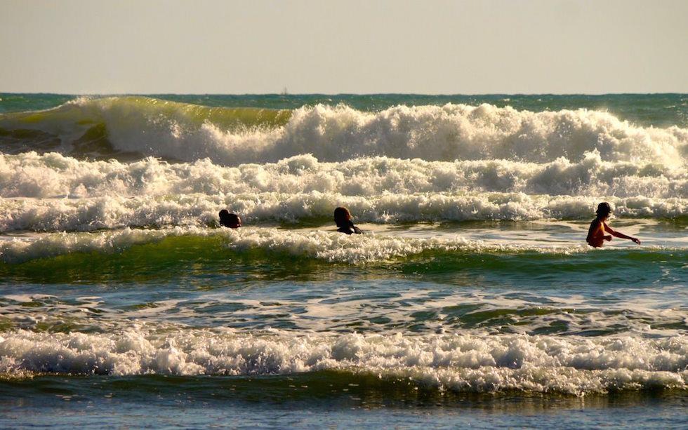 wave and fun at Piha near Auckland