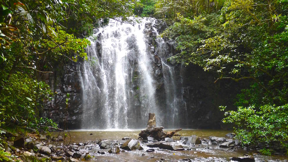 Ellinjaa Falls - Atherton Tablelands - North Queensland