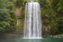 Millaa Millaa Falls, Zillie Falls, Ellinjaa Falls – Wasserfall-Rundweg in den Atherton Tablelands