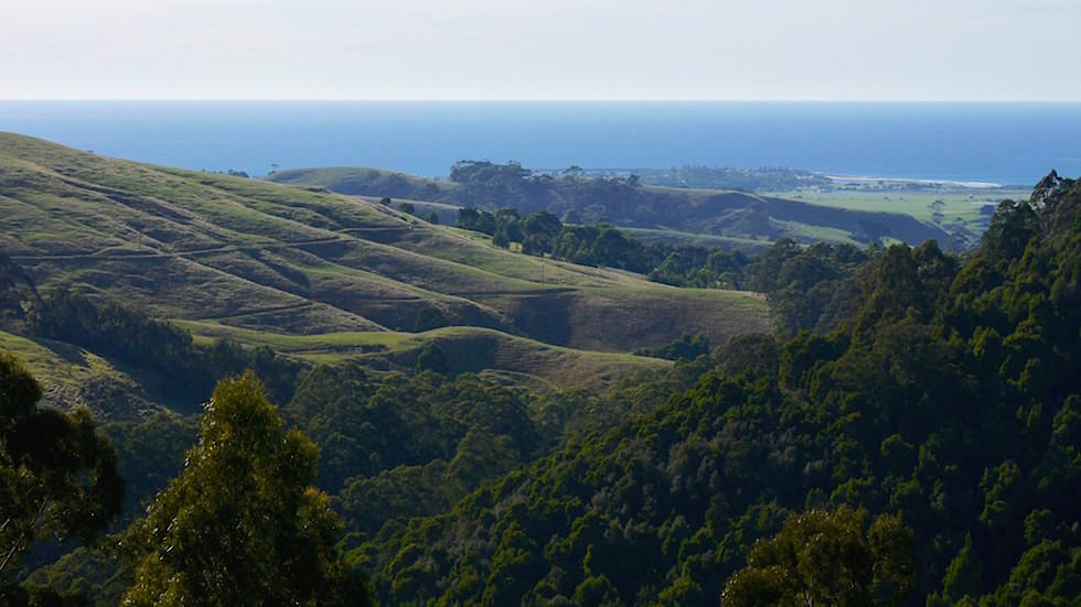 Cape Otway Nationalpark Victoria Australia