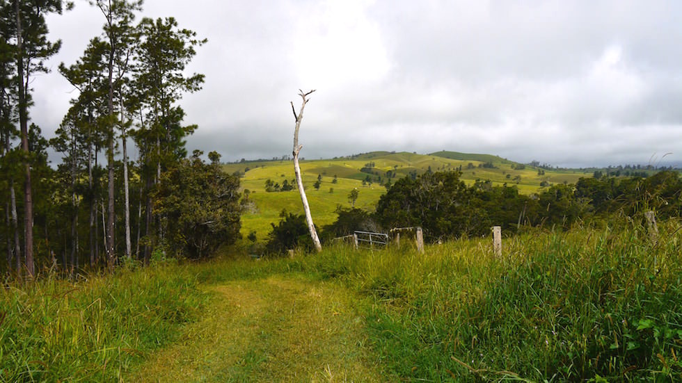 Rolling Hills at Atherton Tablelands