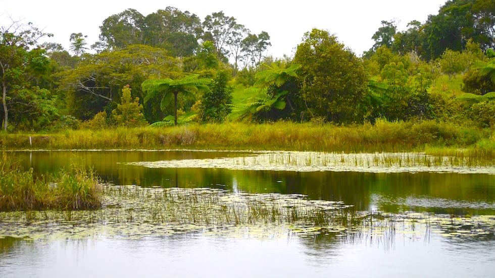 Tarzali Lakes North Queensland near Cairns