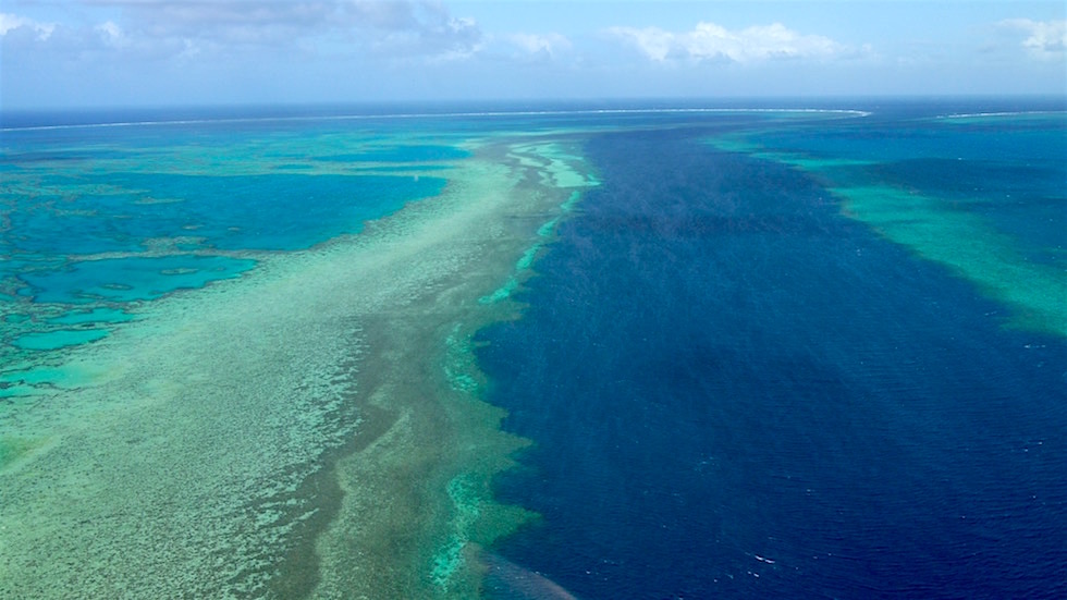 Outer Reef - Great Barrier Reef - Queensland