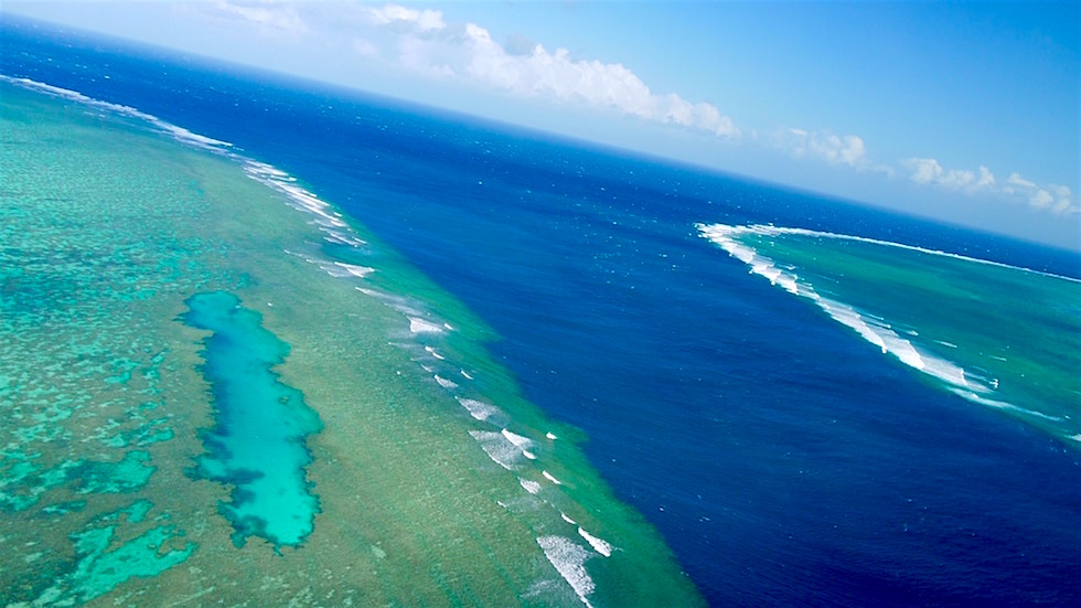 Outer Reef - Whitsundays - Queensland