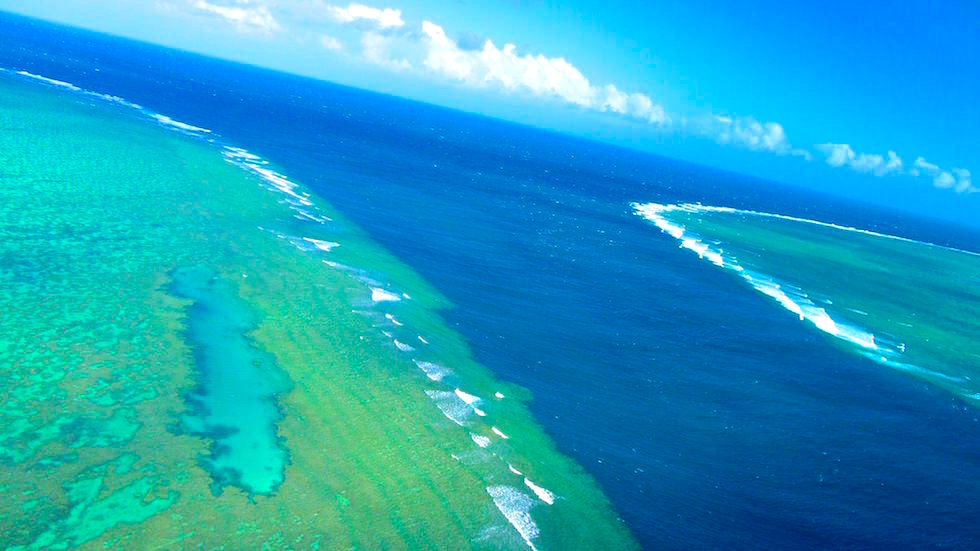 helicopter view near heart reef  great barrier reef Australia