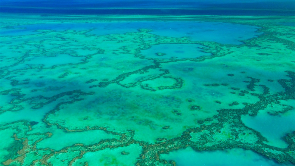 Heart Reef - Outer Great Barrier Reef - Whitsundays - Queensland