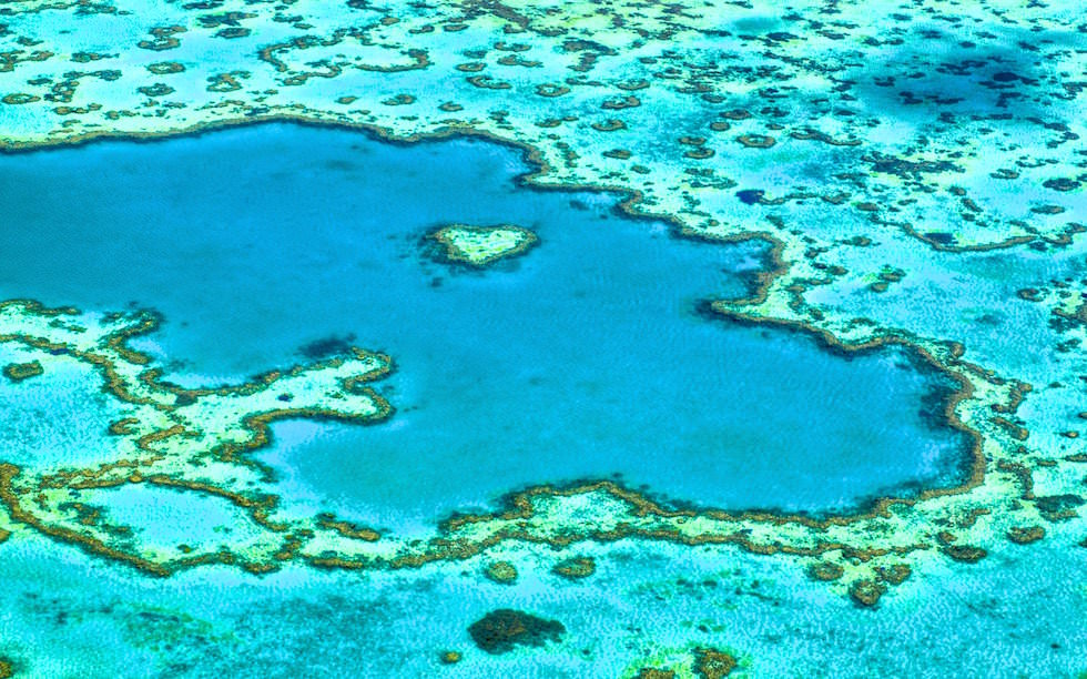 heart reef part of great barrier reef in Queensland Australia