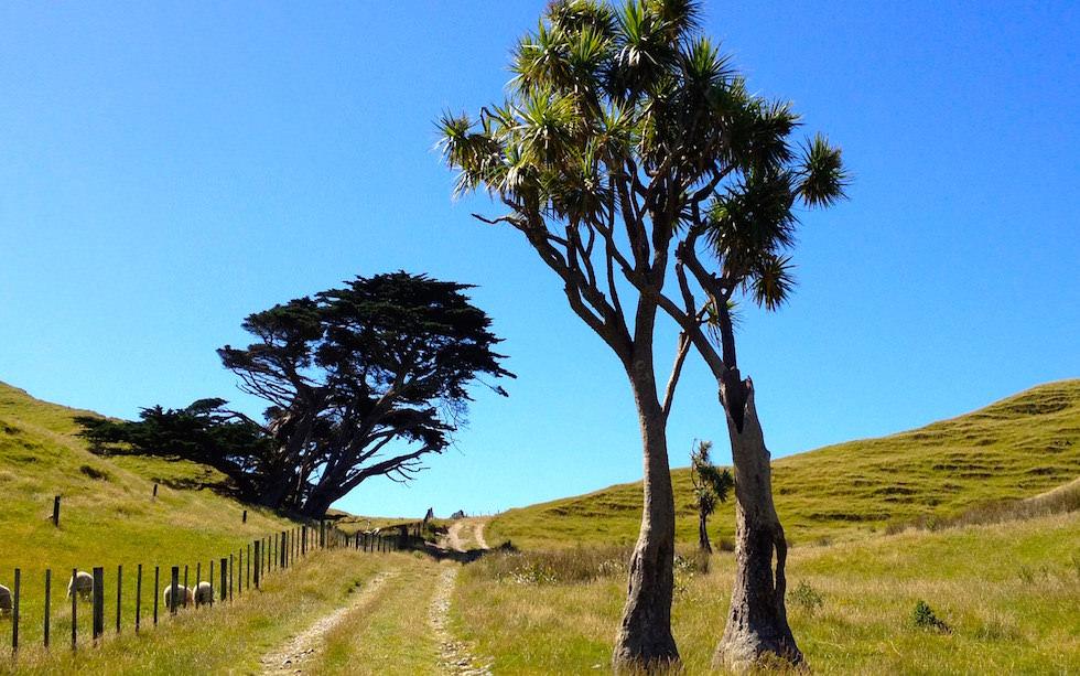 Cape Farewell New Zealand
