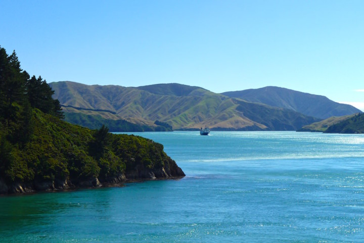Queen Charlotte Sound by Ferry New Zealand 2