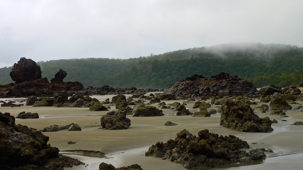 misty morning at beach at cape hillsborough - North Queensland