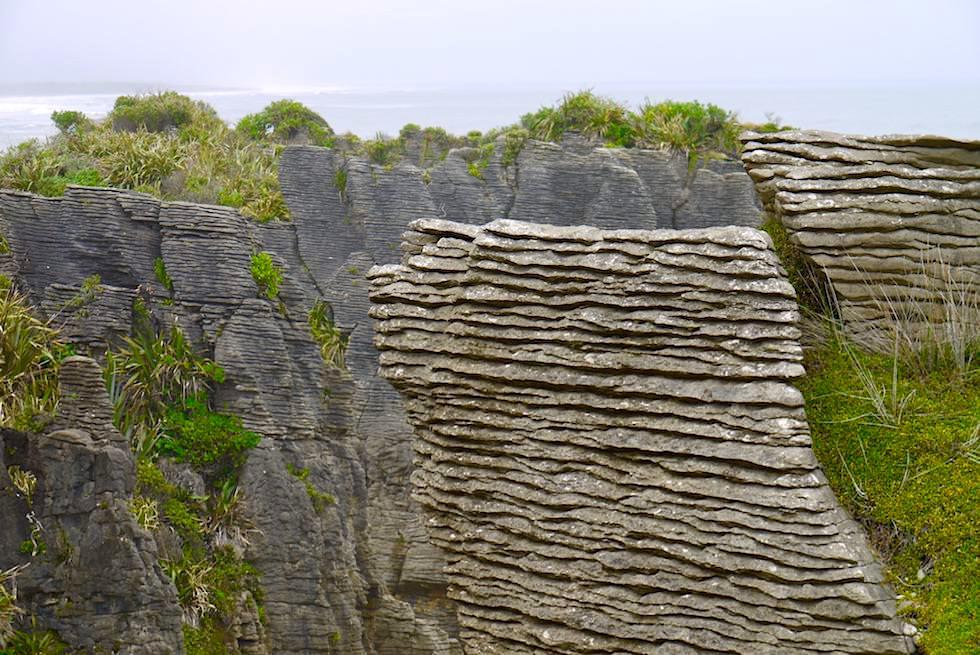 Pancake Rocks bei Punakaiki - geschichtete Felsplatten, die aussehen wie versteinerte Pfannkuchen - Paparoa National Park - Westküste Südinsel Neuseeland