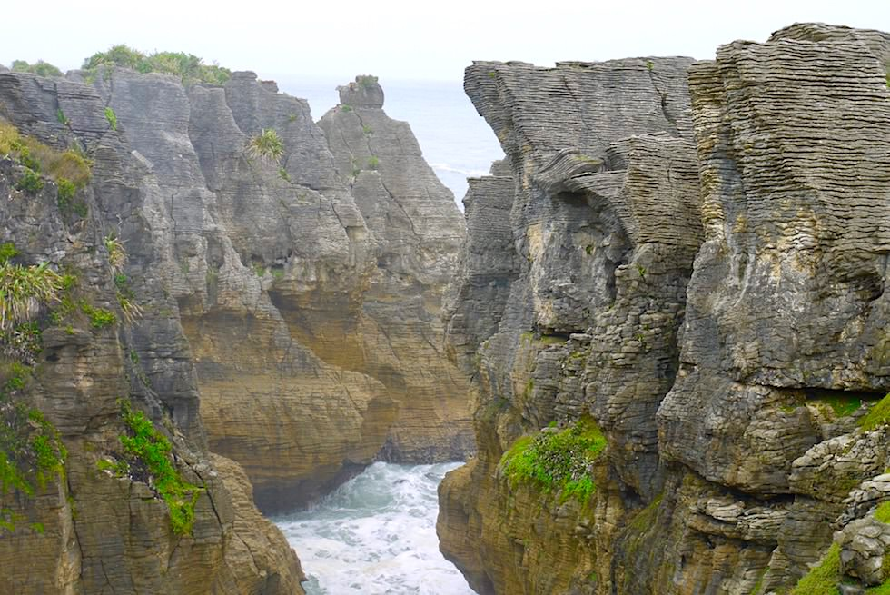 Pancake Rock - mystische Stimmung - Paparoa National Park - Südinsel Neuseeland