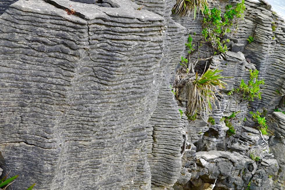 Pancake Rocks - Dünne Fels-Plattenstrukturen sehen aus wie viele Lagen von Pfannkuchen - Südinsel Neuseeland