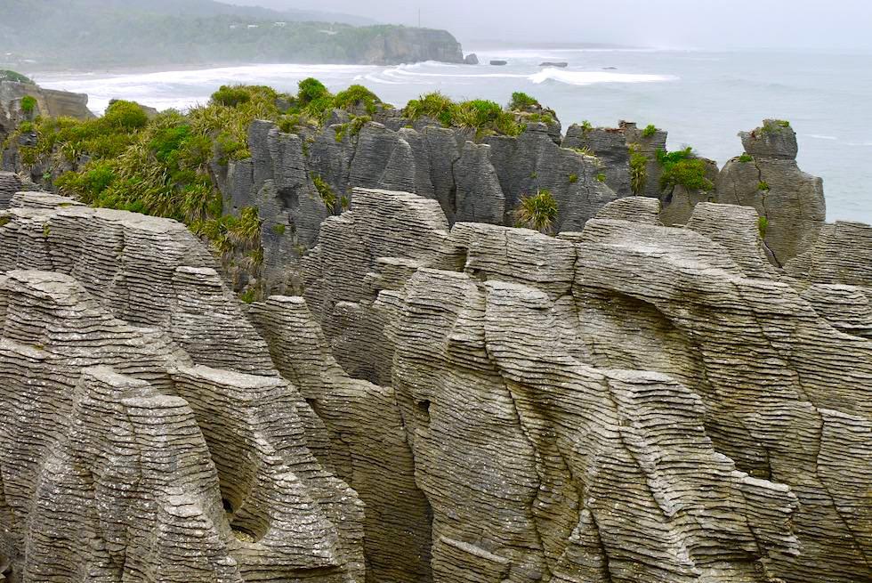 Pancake Rocks bei Punakaiki entstanden durch Schichtverwitterung - Paparoa National Park - Westküste Südinsel Neuseeland