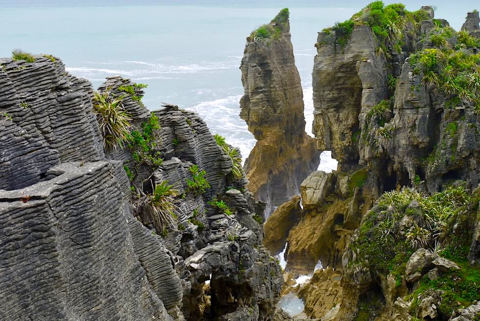 Pancake Rocks - bizarre Felsformation - Paparoa NP - Südinsel Neuseeland