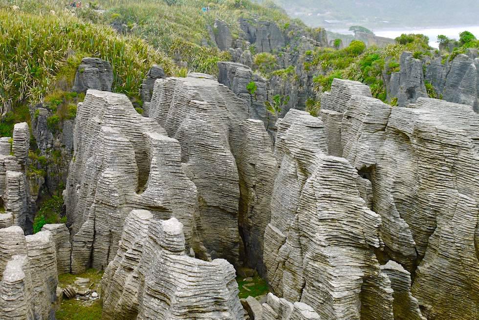 Pancake Rocks bei Punakaiki - spektakuläre Ausblicke - Paparoa National Park - Südinsel Neuseeland