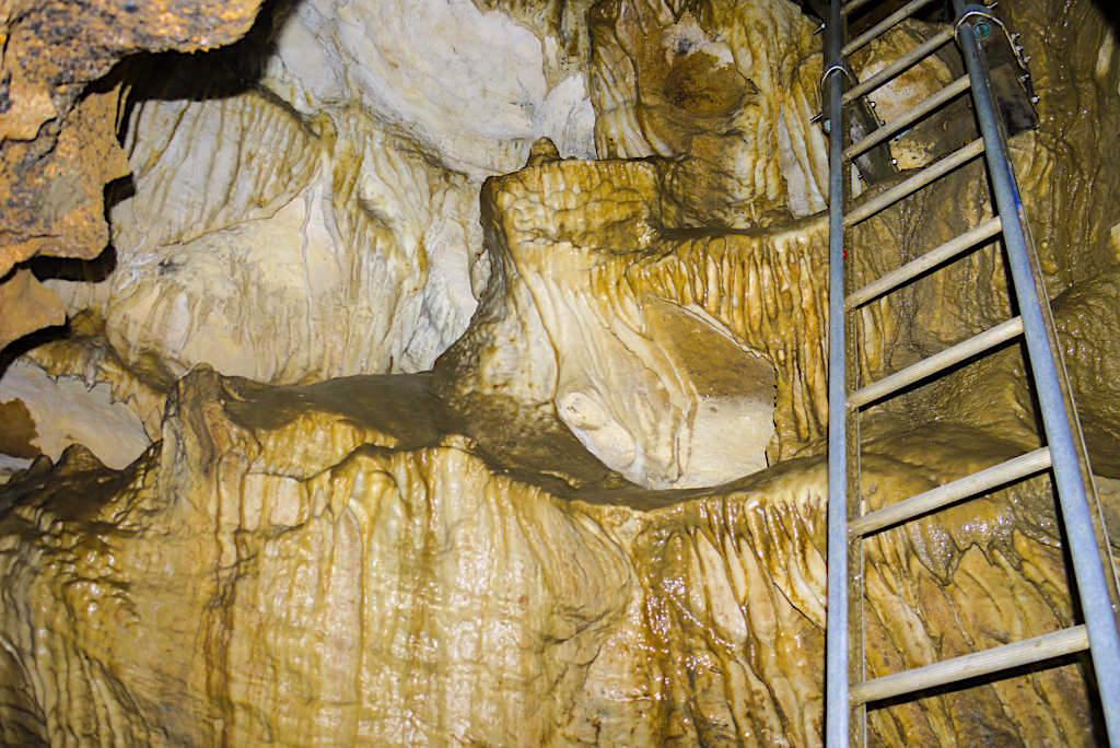Clifden Caves - Leiter führt an beeindruckender Stalaktiten-Wand vorbei nach oben - Geheimtipp mit Abenteuer-Character für die West Southland Southern Scenic Route Südinsel, Neuseeland
