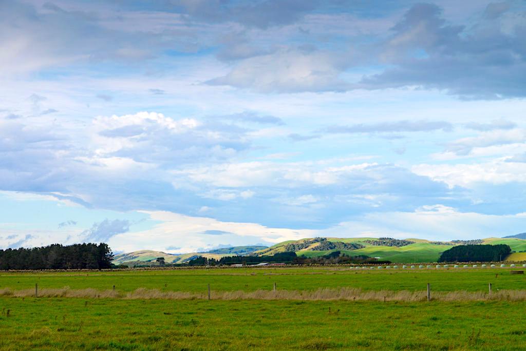 Clifden - Ausblick über Landschaft mit Wiesen und Hügel - Southern Scenic Route - Südinsel, Neuseeland