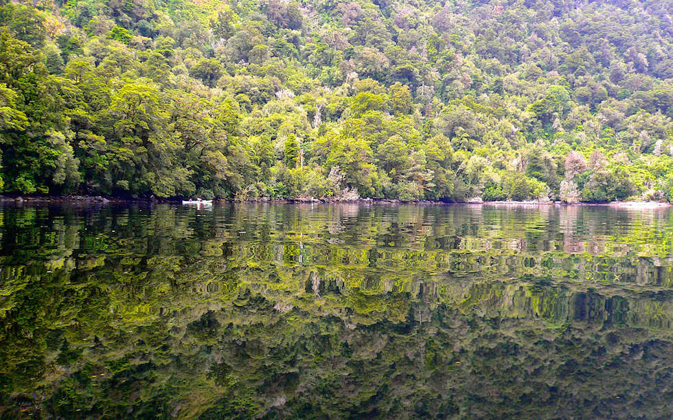 Reflections at Doubtful Sound in Fiordland National Park