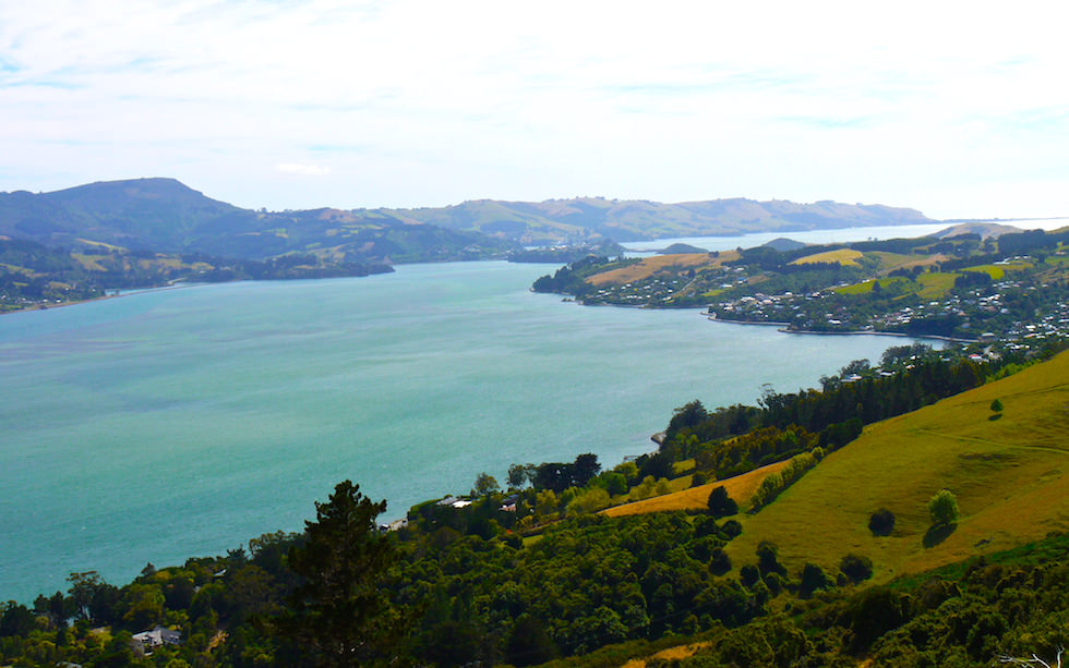 Otago Harbor near Dunedin South Island NZ