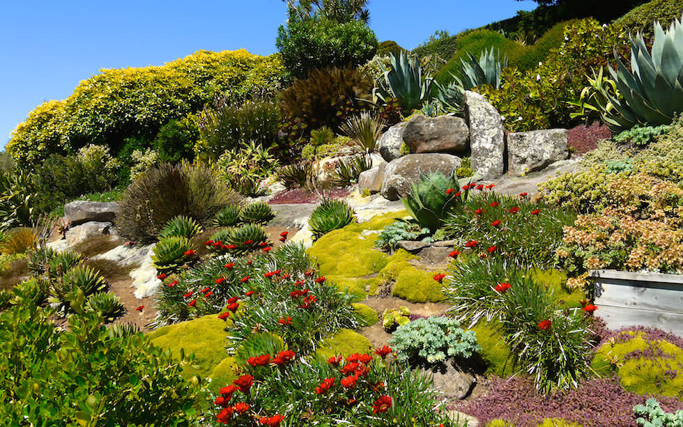 Larnach Castel Garden Otago Peninsula near Dunedin