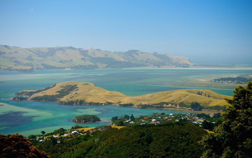 Otago Habour from Larnach Castel Garden Otago Peninsula near Dunedin