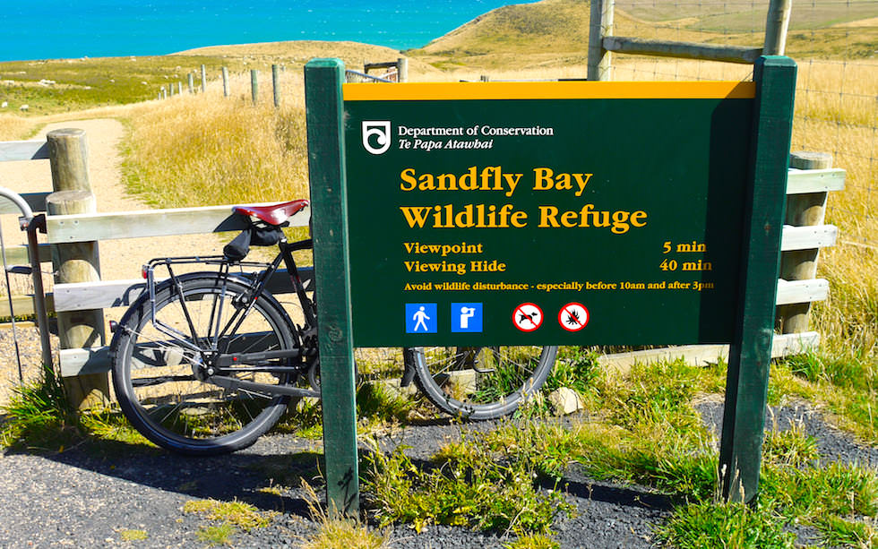 Sandfly Bay Otago Peninsula near Dunedin New Zealand