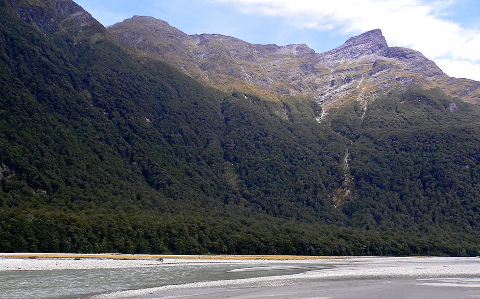 Dart River near Mt Aspiring Nation  Park