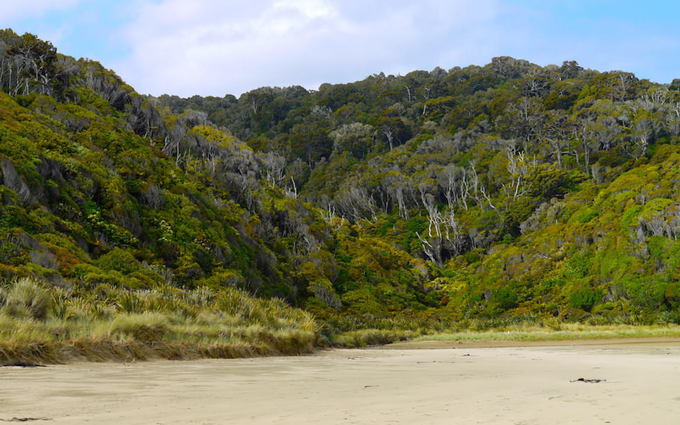 Beach at Cathedral Cave Entrance Catlins New Zealand South Island