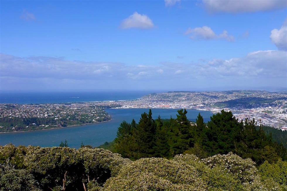 Ausblick vom Signal Hill auf Dunedin & Otago Habour - Neuseeland Südinsel