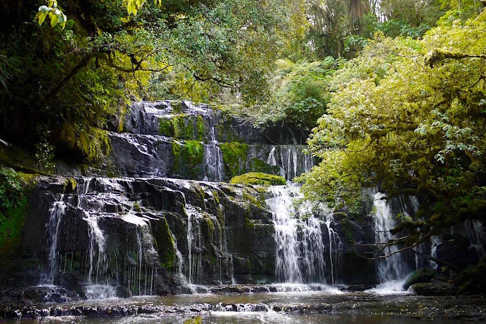 Wasserfälle der Catlins: Purakaunui Falls von der Plattform aus gesehen - Catlins - Neuseeland Südinsel