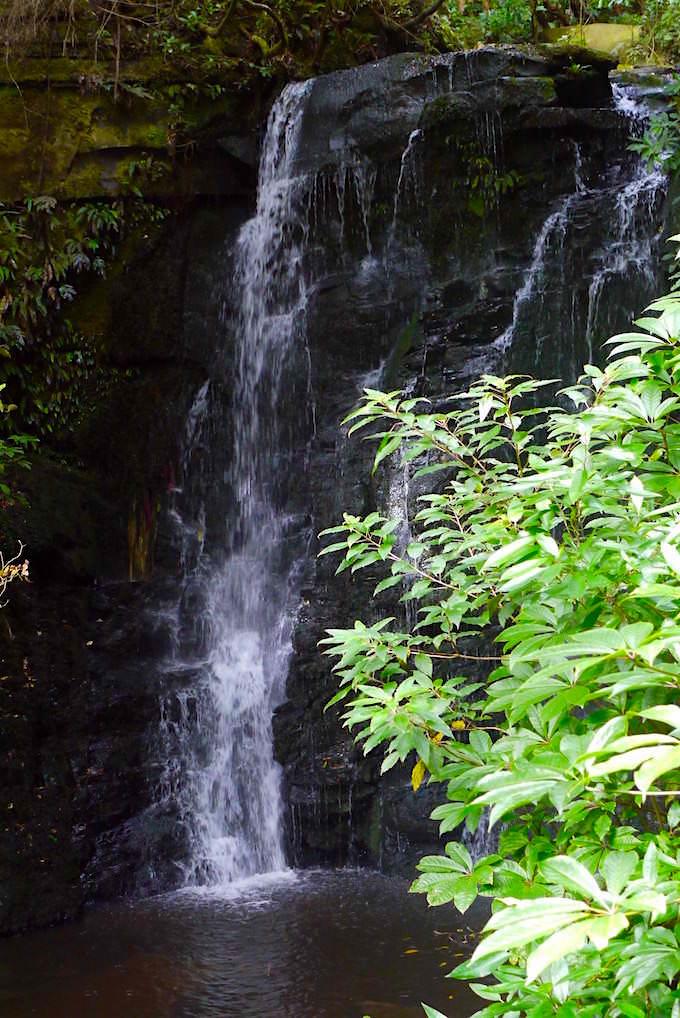 Wasserfälle der Catlins: Horseshoe Falls oberhalb der Matai Falls - The Catlins - Neuseeland Südinsel