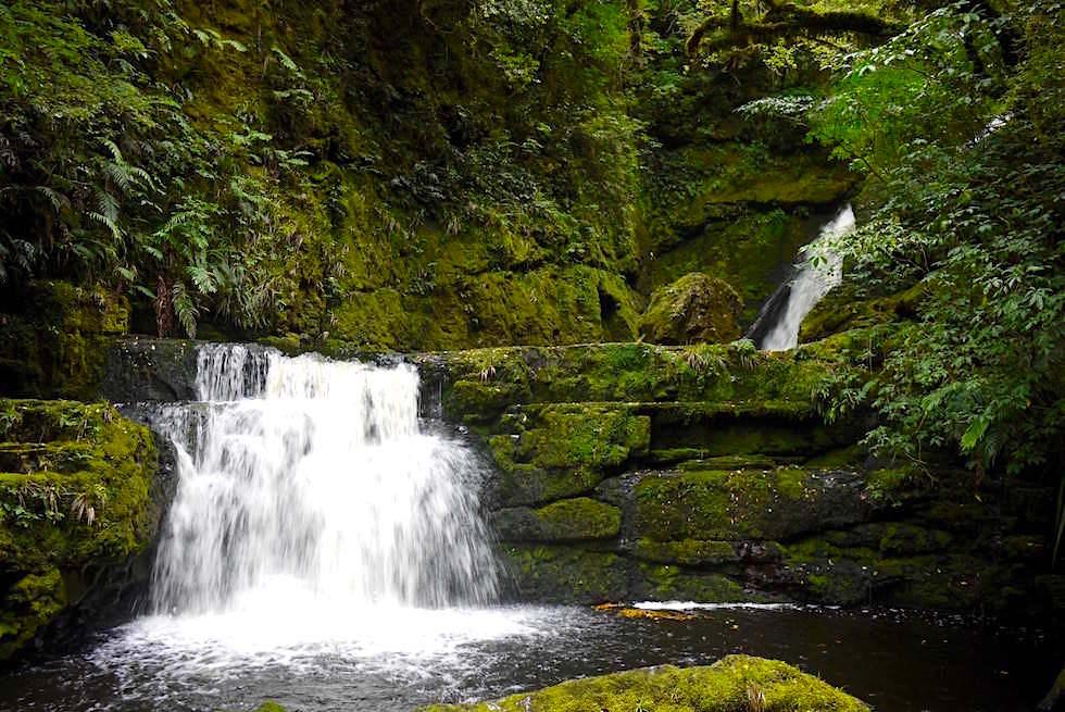 Wasserfälle der Catlins: Moosbewachsener Lower McLean Falls - Catlins - Neuseeland Südinsel