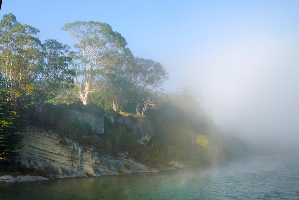 Waiau River - Mystische Nebelstimmung am Ufer am frühen Morgens - Südinsel, Neuseeland