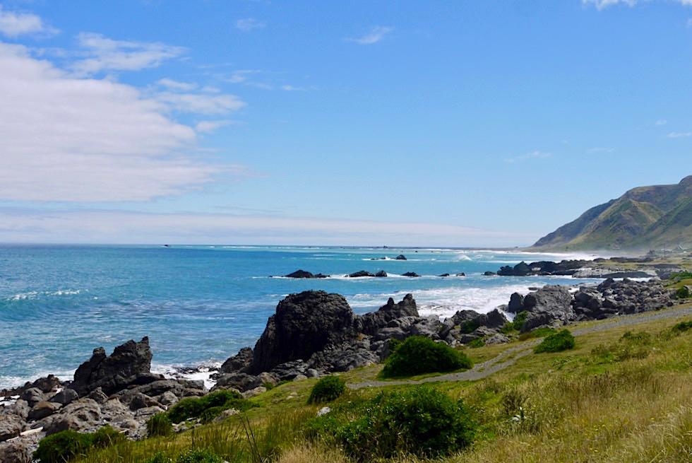 Cape Palliser - Ausblick auf die Südküste - Nordinsel, Neuseeland