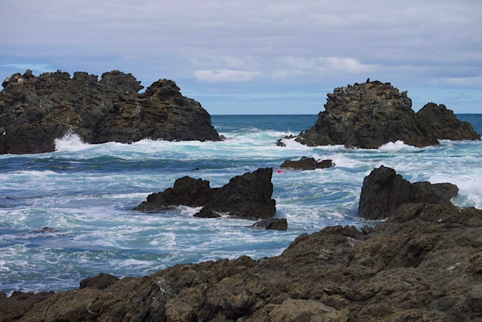 Cape Palliser - Felsen, Wind & rauer Süd-Pazifik - Nordinsel, Neuseeland