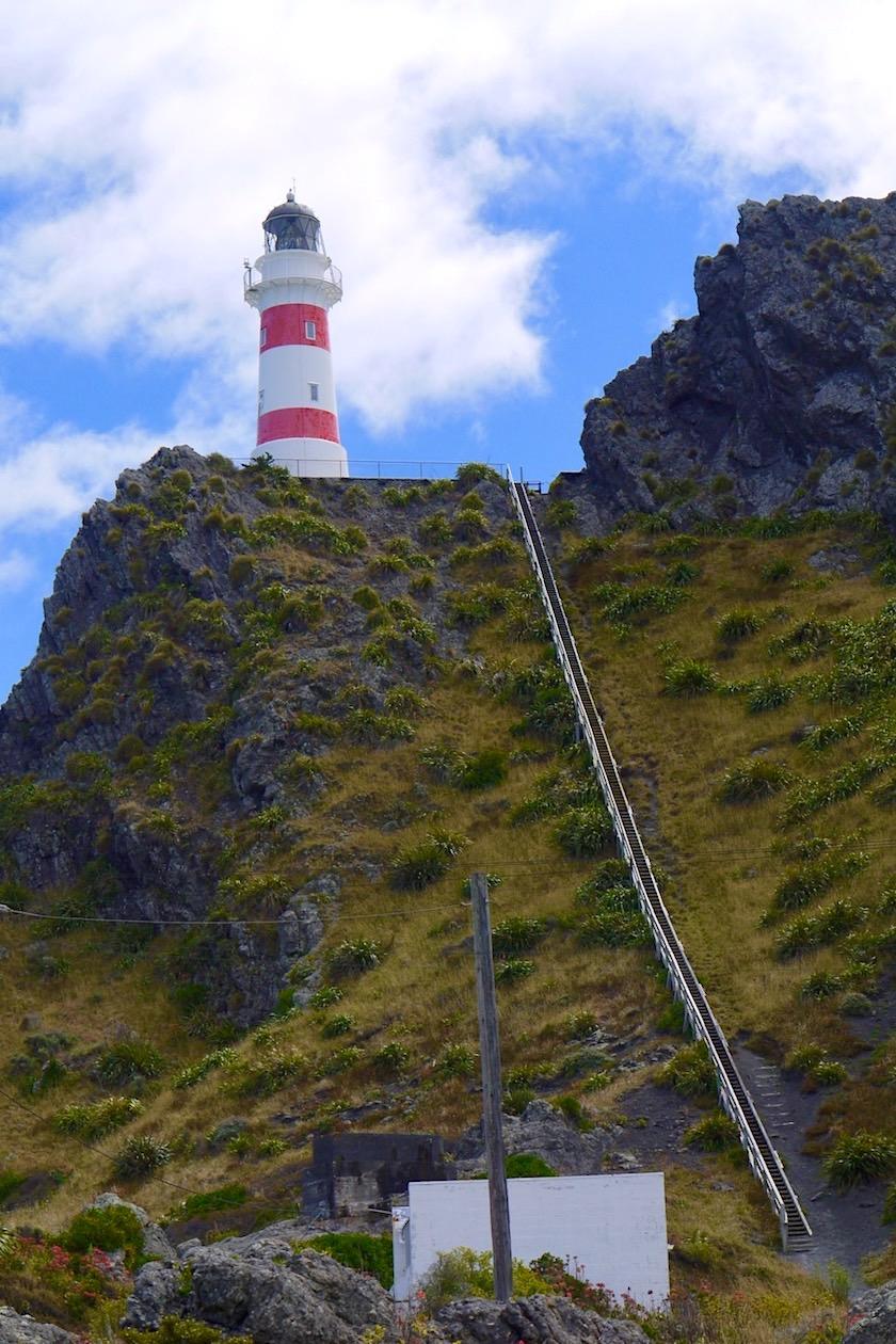 Cape Palliser Lighthouse - 253 Stufen führen zur Plattform - Nordinsel, Neuseeland
