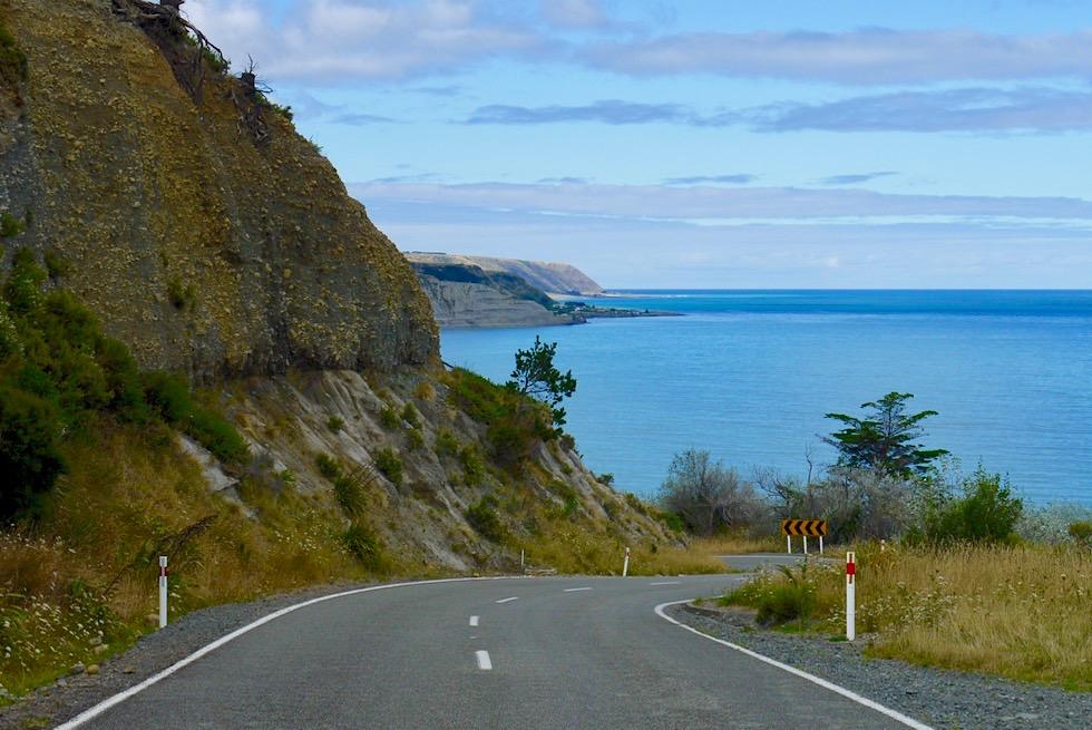 Cape Palliser Road & Ausblick auf die raue, ursprüngliche Süd-Küste - Nordinsel, Neuseeland