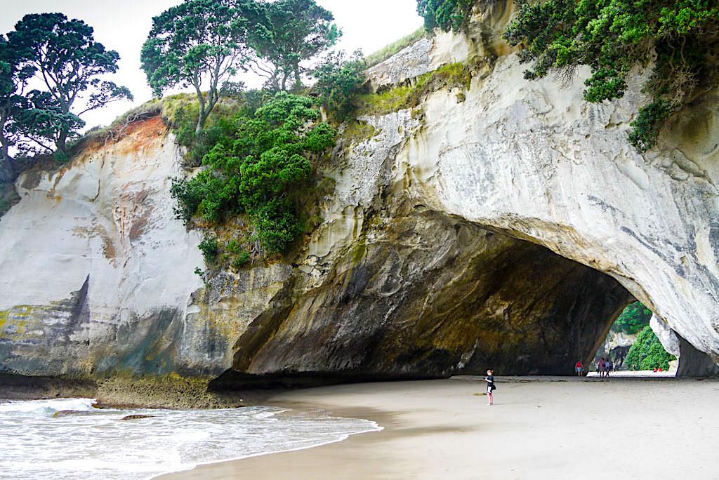 Faszination Cathedral Cove: beeindruckende Felszunge mit Höhle - ein Coromandel Highlights - Nordinsel, Neuseeland