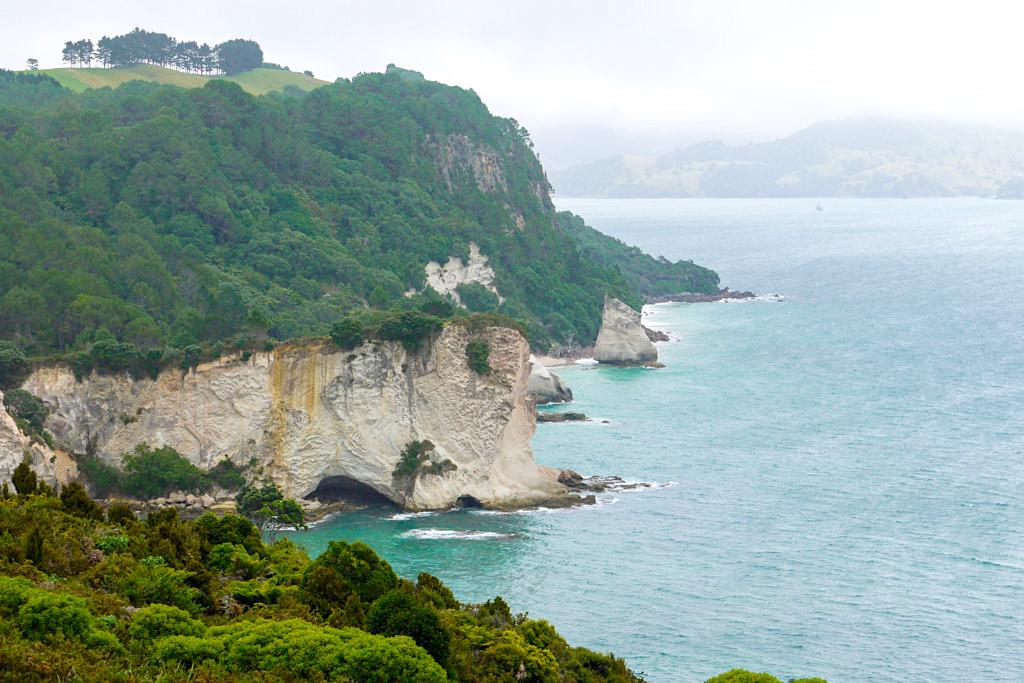 Cathedral Cove Walk - Mystische Ausblicke im Nebel - Coromandel Peninsula - Nordinsel, Neuseeland