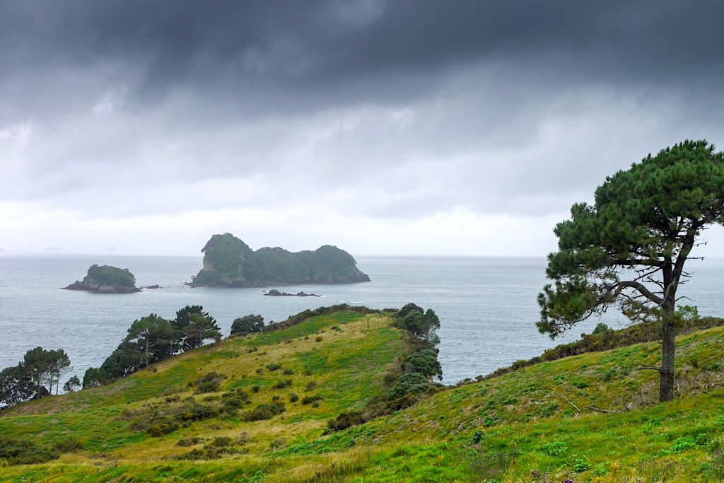 Cathedral Cove Walk: mystische Stimmung bei Wolken - Coromandel Highlights - Nordinsel, Neuseeland