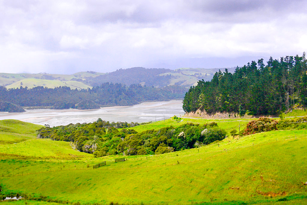 Coromandel Peninsula - Grandiose Ausblicke auf Manaia, Manaia River und das Mündungsgebiet - Nordinsel, Neuseeland